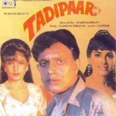 Tadipaar (1993)