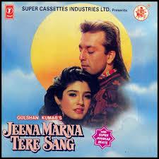 Jeena Marna Tere Sang (1992)